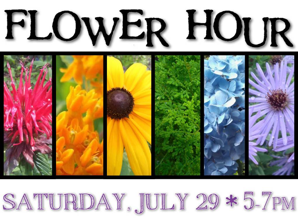 Flower Hour July 2017