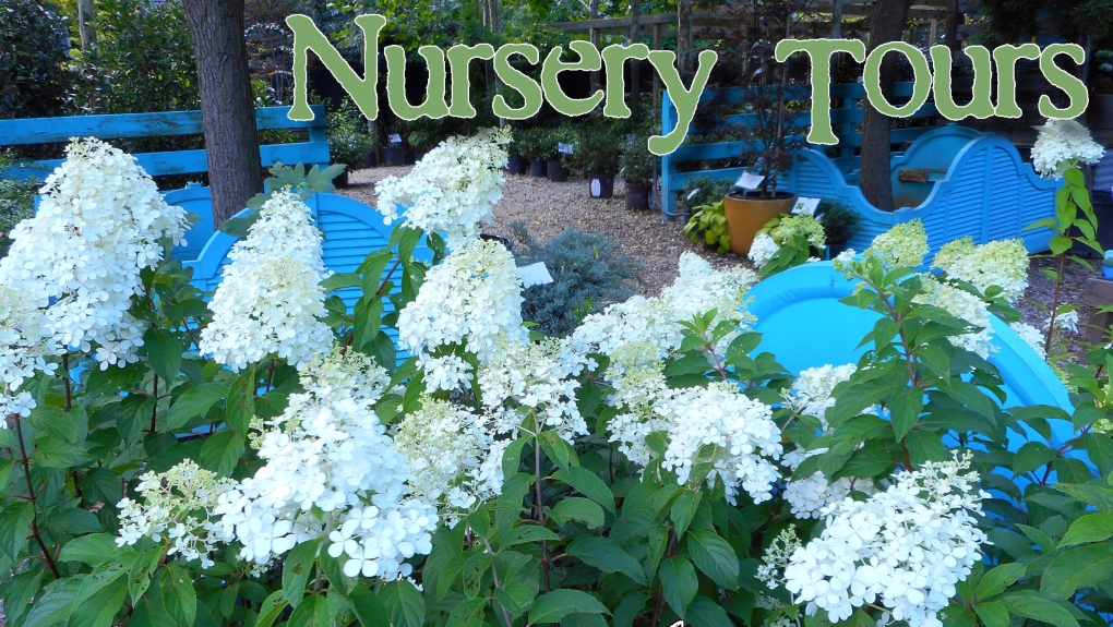 nursery-tours-pic.jpg